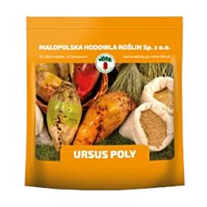 Burak pastewny URSUS POLY C1 0,5kg żółty HBP