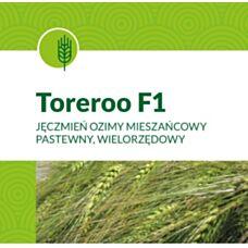Jęczmień ozimy Toreroo F1 900tys. nasion C1 Syngenta