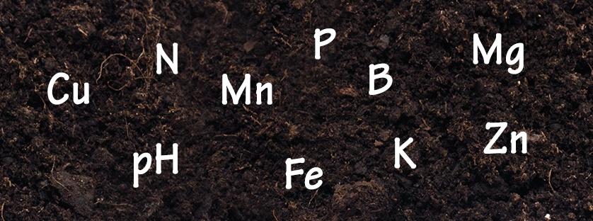 Analiza gleby – niezbędna przy dawkowaniu nawozów