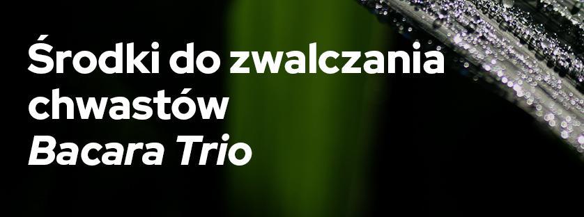 Środki do zwalczania chwastów: Bacara Trio
