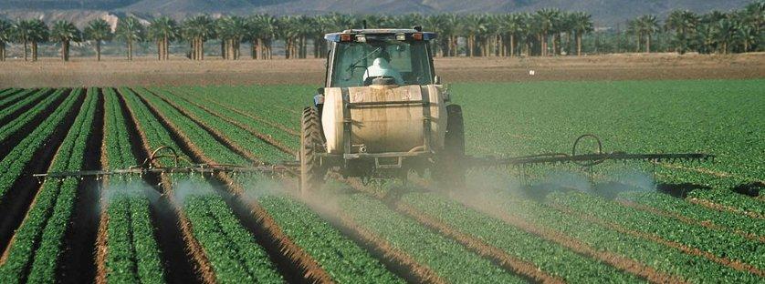Jak zwiększyć skuteczność środków ochrony roślin?