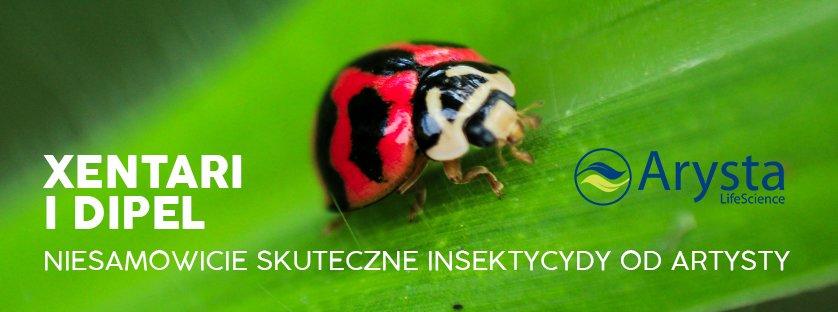 XenTari i DiPel niesamowicie skuteczne insektycydy od Artysty