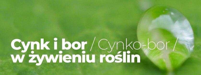 Cynk i bor (Cynko-bor) w żywieniu roślin