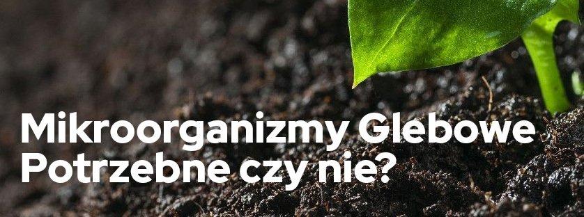 Mikroorganizmy glebowe - potrzebne czy nie?