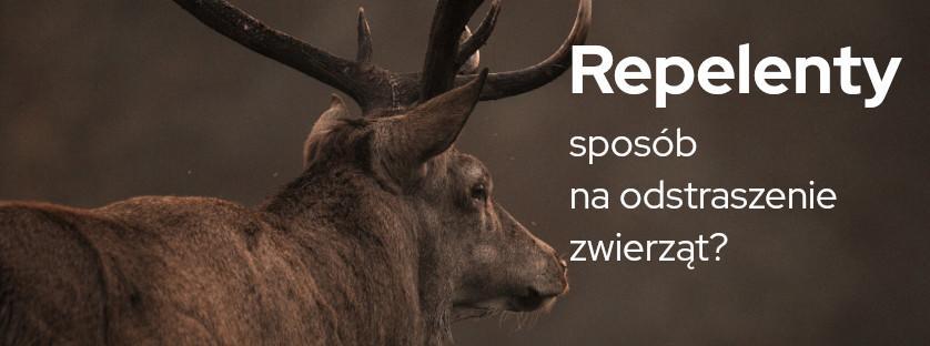 Repelenty - sposób na odstraszenie zwierząt?