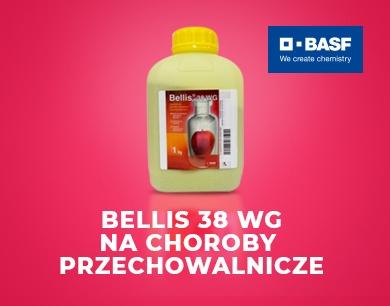 Bellis 38 WG na choroby przechowalnicze