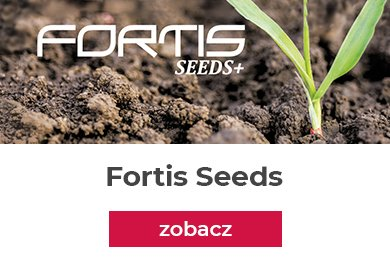 Fortis seeds