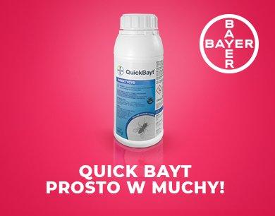 Quick Bayt - prosto w muchy!