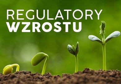 Regulatory wzrostu