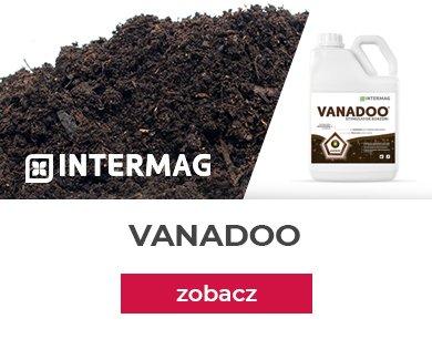 Vanadoo